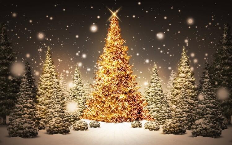 обои «Christmas»